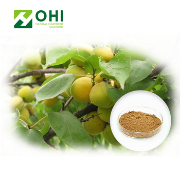 Best selling weight-losing vitamin b17 bitter almond