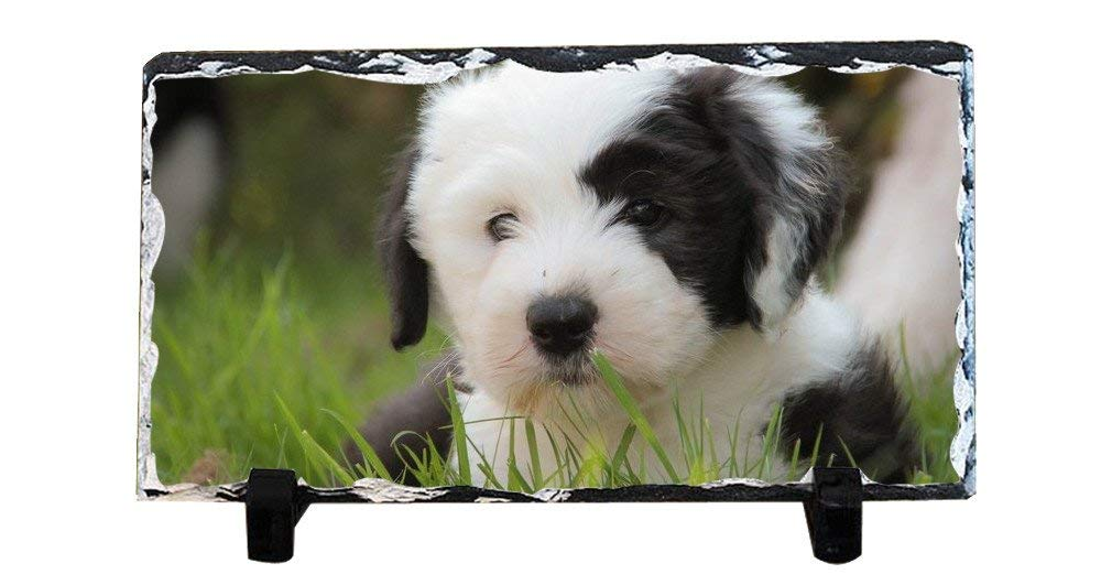 Y.H.X Discount Personalized Picture Frames Photo Rock Slate Puppy Photo Plaque Customized Photo Plaque