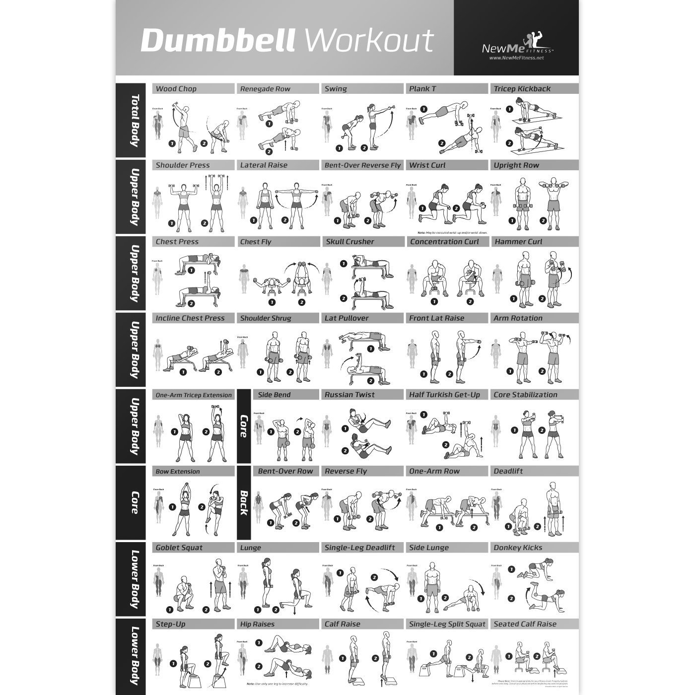 Buy Dumbbell Workout Exercise Poster Now Laminated Strength