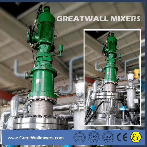 New Condition Soap and Shampoo Product Type Dispersion Mixers Agitator