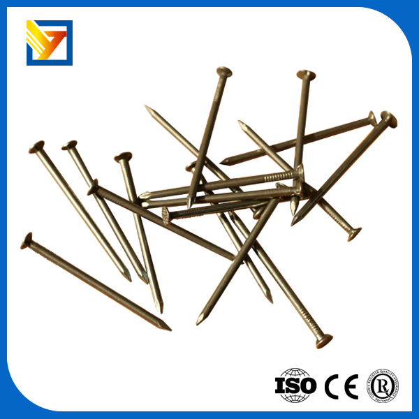Plastic nails carpenter with high quality