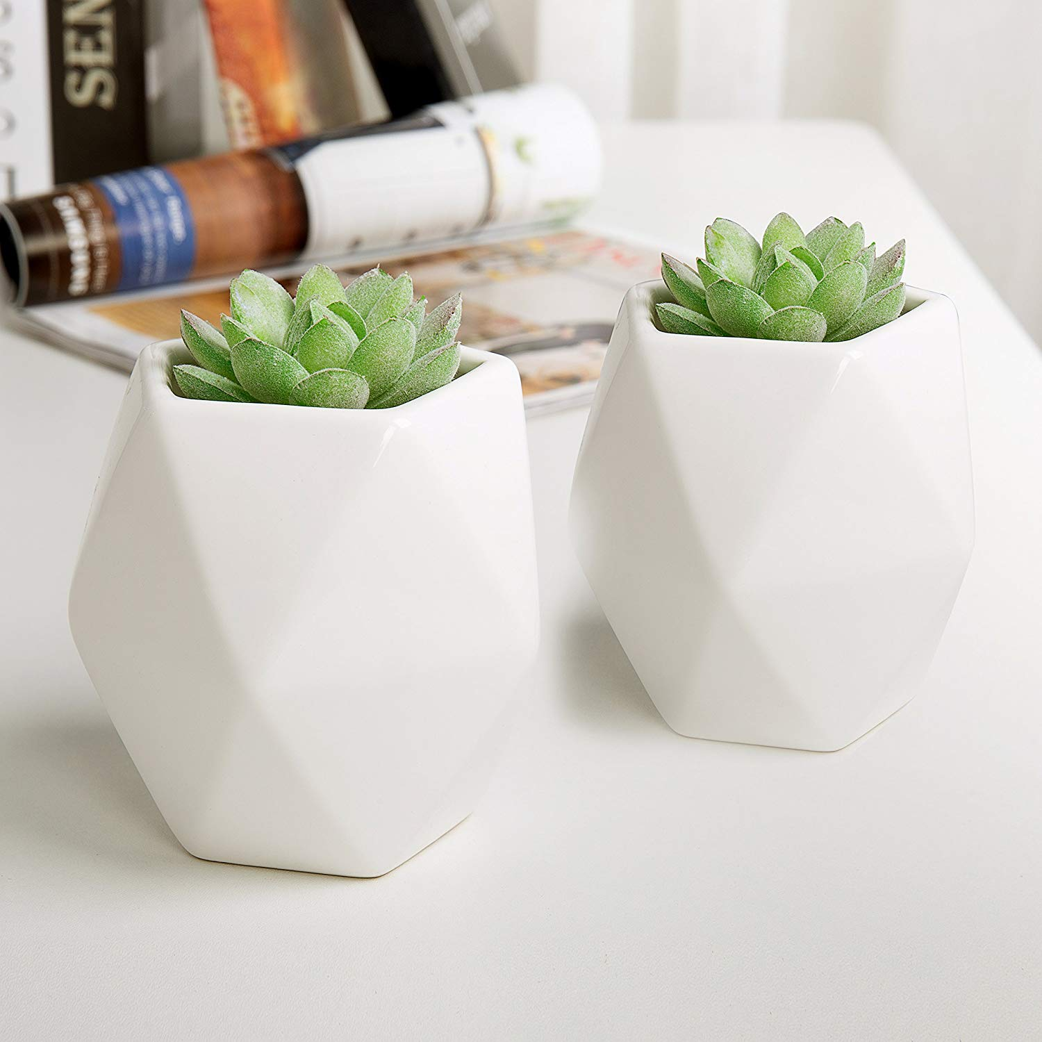 White Ceramic Wall Mounted Mini Succulent Planters, 4-inch Geometric Tabletop Plant Pots, Set of 2