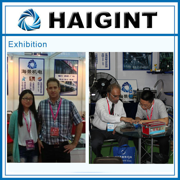 E0295 Haigint low pressure greenhouse fogging irrigation misting nozzle price/for sale / supplier/manufacturer