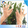 elbow lenght pe gloves with CE certificate