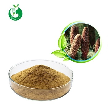 Cynomorium songaricum extract water soluble suoyang extract powder