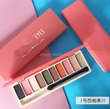2017 hot Cosmetics waterproof matte and shimmer 10 colors eyeshadow in one box with high quality