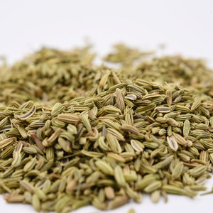Dried whole Fennel Seeds Fructus Foeniculi 98% purity ,low pesticide