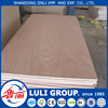 Hot sale black walnut/oak/ash/cherry veneer Plywood with CE/CARB/ FSC/ SGS/ ISO