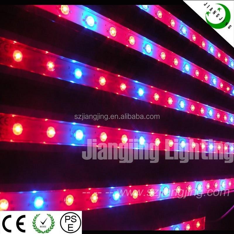 Ce Rohs Approved 1w Led Chip Dc12v 900mm Kind Led Grow Lights ...