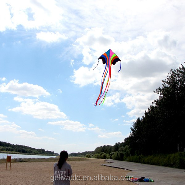 Weifang easy flying large rainbow delta kite