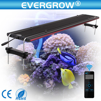 https://sc02.alicdn.com/kf/HTB1zfRxMXXXXXaNXFXXq6xXFXXXE/waterproof-led-aquarium-120-cm-for-reef.jpg_350x350.jpg