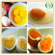 Egg yolk Extract/ Egg yolk lecithin/egg yolk powder price