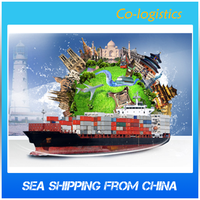 All in Ocean Freight Shipment to USA Service