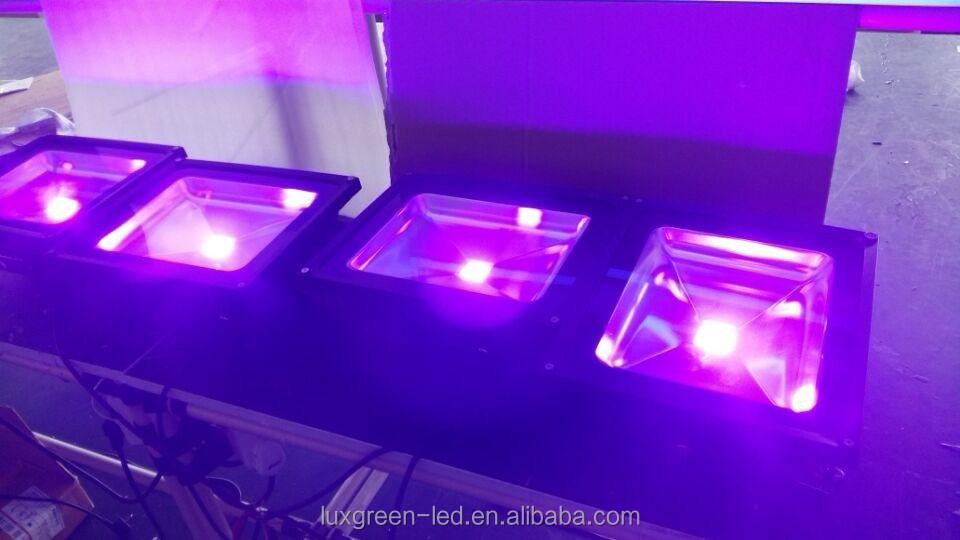 70w Purple/uv Led Flood Light,365nm 400nm Uv Led Lamp - Buy Uv Led ...