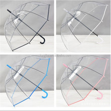 New style fashion design transparent Straight umbrella