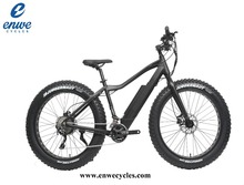 Enwe 48v 500W Bafang Motor Mountain Bike Electric Fat Bike Electric MTB Made In China E Bicycle