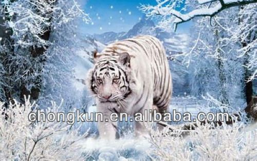 Size customized lenticular 3d animal pictures PP PET