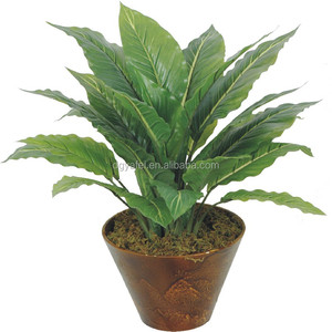 Factory price wholesale artificial aglaonema whitehorse bonsai with pot docoration for indoor make in Dongguan