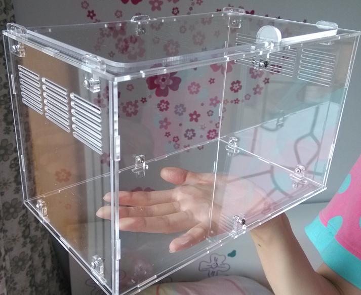 acrylic square shape special design reptile box