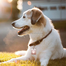 Fashion Pet collar pet toy With Bluetooth Anti-lost And Breathing fine pet products