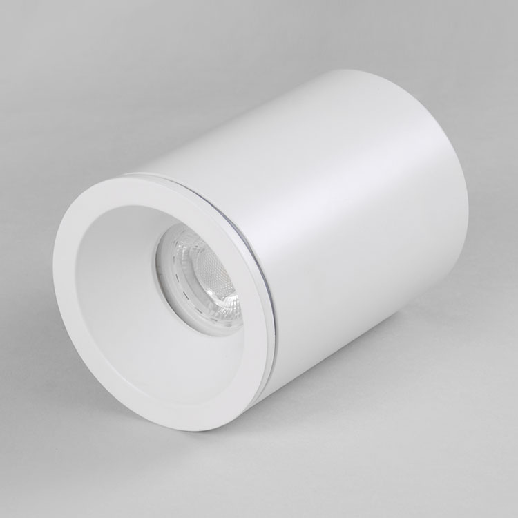 IP65 ceiling waterproof light Fixed Surface mounted <strong>downlight</strong>
