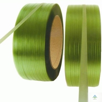 Pet paper and special packaging materials industry strapping
