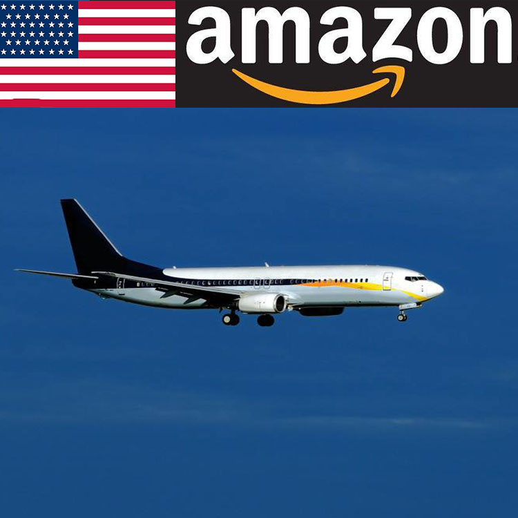 Amazon FBA Air Express Shipping Serviceจากจีนฝรั่งเศส/USA
