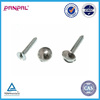 BSCI approved China factory Cap Cover Decorative Mirror Screws
