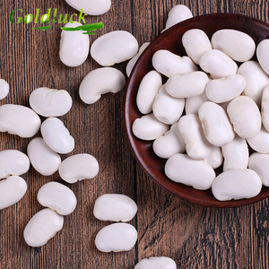 Competitive Price Fresh Dry price of white kidney beans