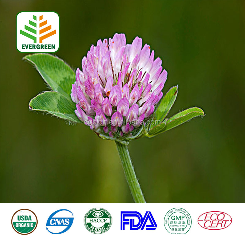 FDA,KOSHER Certificated Red Clover Flower Extract 2.5%-40.0% for Antisepsis, anti-inflammation