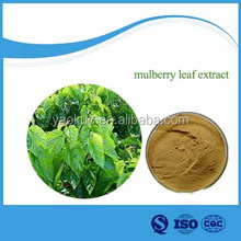 100% Pure Natural Mulberry Leaf Extract