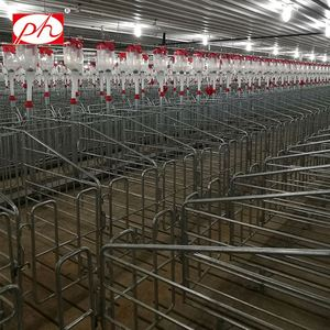 Hot galvanized single pig cages for pig farm