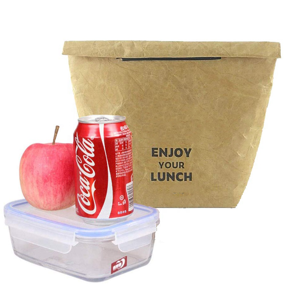 Custom Waterproof Insulated Picnic Bags Paper Tyvek Cooler Lunch Bag