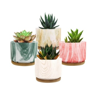 [4-Pack] Mini Succulent Plant Pots Succulent Planter Flower Pot for Office Home