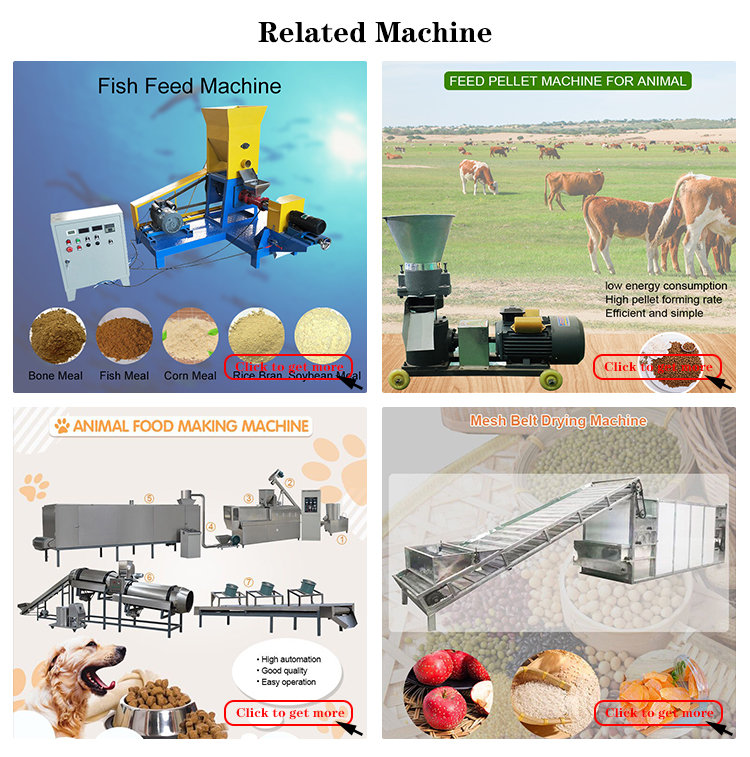 The best small fish meal drying production line fish meal machine plant