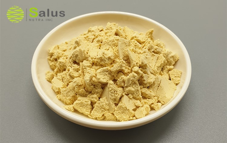 Wholesale Pea Protein Isolate