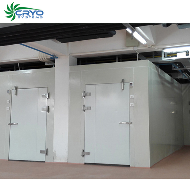 california squid cherry tomato seeds cool room freezer room cold room manufacturers food chillers for sale