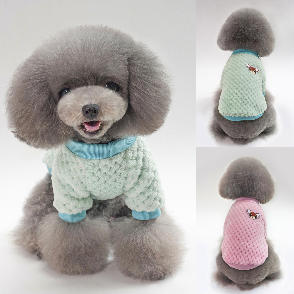 Funny Dog Knitted velvet Hoodies Jumper Chihuahua Blouses
