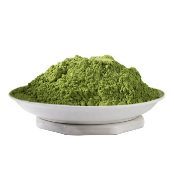 matcha green tea powder factory direct supply high quality with nice price