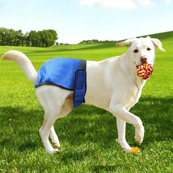 Cotton Material Health Pet Physiological Pants for Female Dogs,dog diaper disposable Breathable Coat dog health care