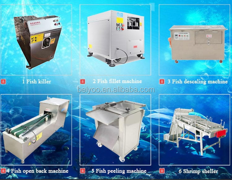 Big Carp Fish Scaling Cleaning Gutting Machine For Sale
