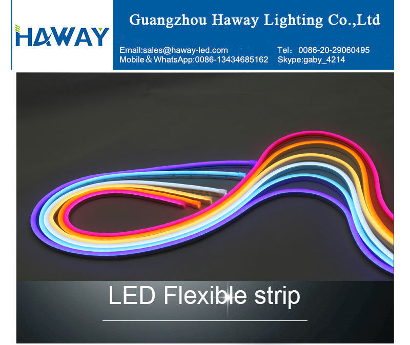 2019 best  selling  12V/24V  120leds/M neon flex 2835 outdoor  LED   strip light