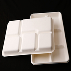 "Restaurant take away 12.5""by8.5"" tray 5 compartments sugarcane plates biodegradable"