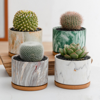 Unique Marble Pattern Ceramic Planter Pot Indoor With Bamboo Tray