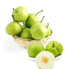 high quality fresh pears bulk purchase factory price farm pear fresh pear china