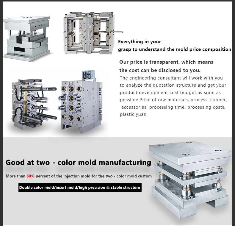 Guangdong Dongguan Muiti-type Precision Injection Mold and Mould Maker