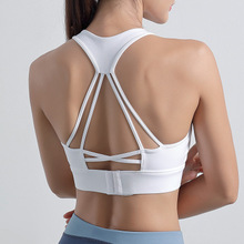 Fille <span class=keywords><strong>Sport</strong></span> Sans Couture Chaud <span class=keywords><strong>Femmes</strong></span> Sublimation Bande Élastique Pour soutien-gorge De <span class=keywords><strong>Sport</strong></span>