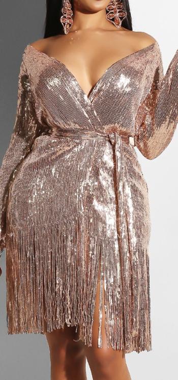 YIZHIQIU Bling Long sleeve V Neck Fringed Embroidered Sequin Woman Dress