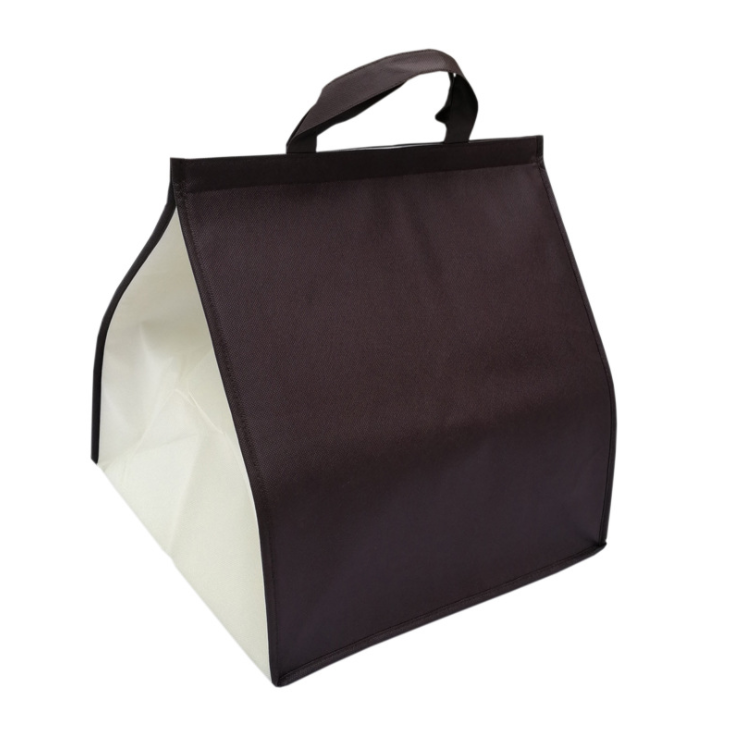 ECO Wholesale Carrier 120gsm Non-Woven Insulated Cooler Bag For Cake