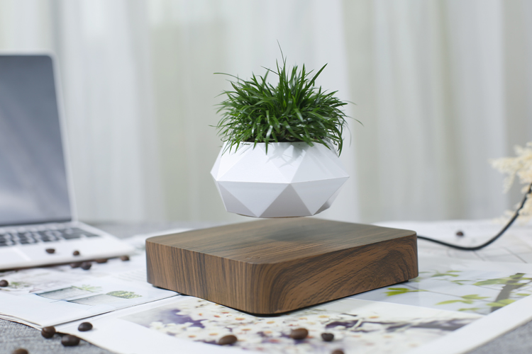 HCNT Levitation bonsai pot air bonsai table gift home decoration